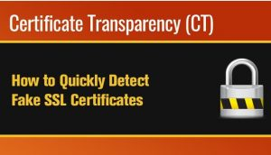 DNSSEC - How It helps Detect Fake SSL Certificates